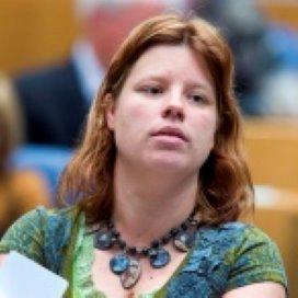 GroenLinks vreest verschillende gemeentelijke aanpak pgb