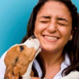 'Dierenbeschermers kunnen huiselijk geweld melden'