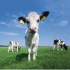 Boerenbond LLTB: Zorgboerderijen kunnen bezuinigingen helpen opvangen
