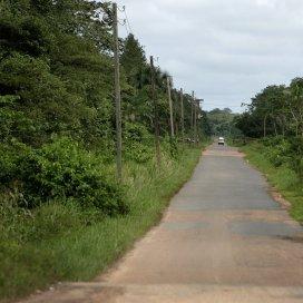 'De sjamanistische scholing in de bush heeft het wereldbeeld van Smit grondig gekanteld'