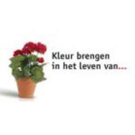 Pgb voor welzijn een groot succes in Almelo
