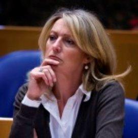 VVD: Overlastgevende jongeren aan de enkelband