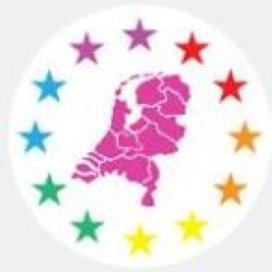 Partijen profileren zich met roze politiek