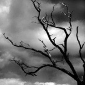 Ketenaanpak SuNa houdt Haagse jongeren na zelfmoordpoging in beeld