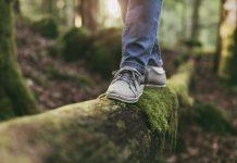 foto van balanceren over een boomstronk