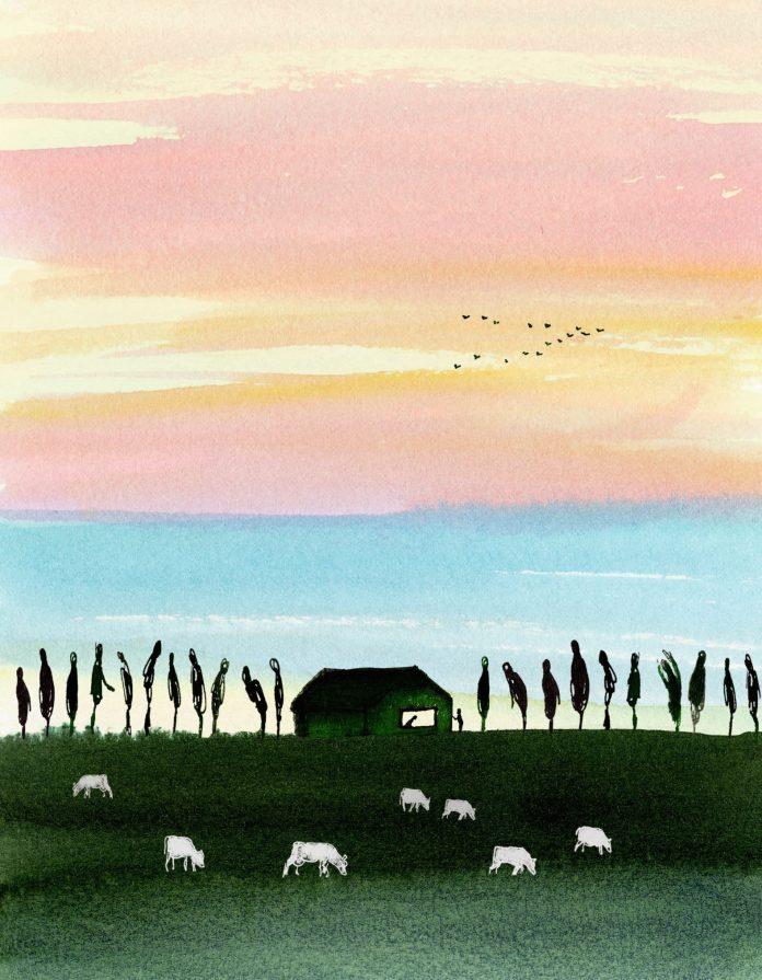 Schildering weiland. Illustratie: Claudie de Cleen